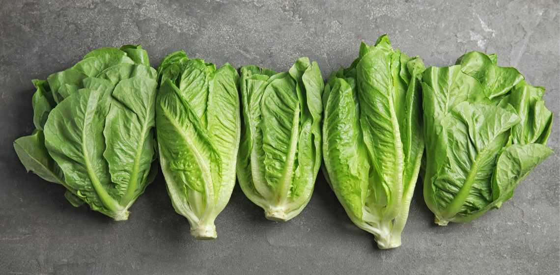 lettuce-wash-validation-blog